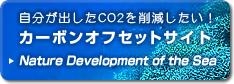 自分が出したCO2を削減したい!カーボンオフセットサイトNature Development of the Sea