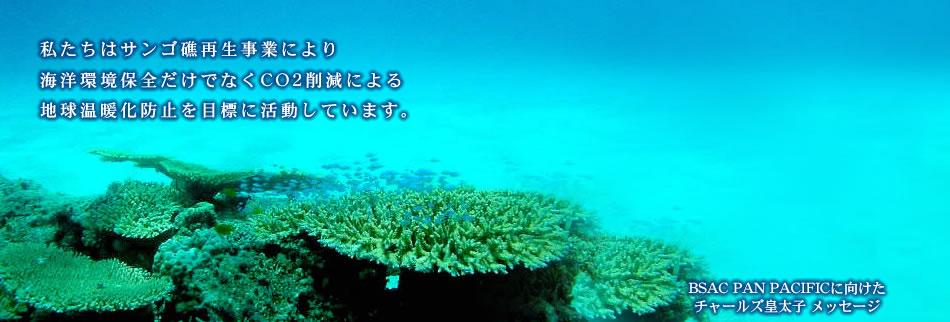 私たちはサンゴ礁再生事業により海洋環境保全だけでなくCO2削減による地球温暖化防止を目標に活動しています。